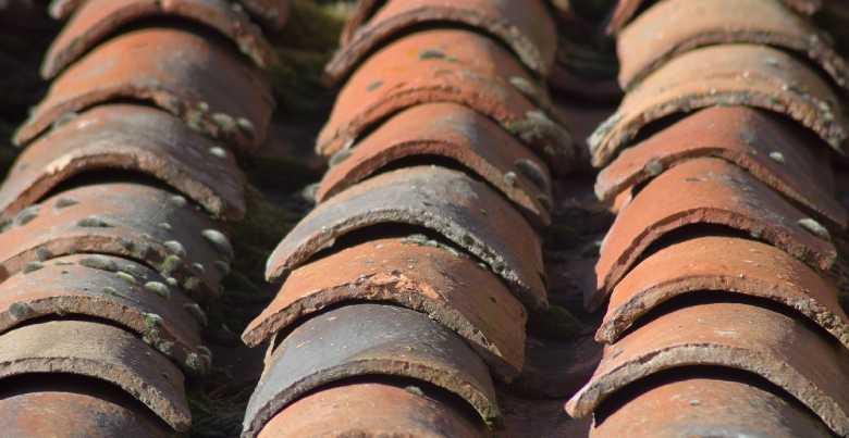 dakwerker gezocht prijs